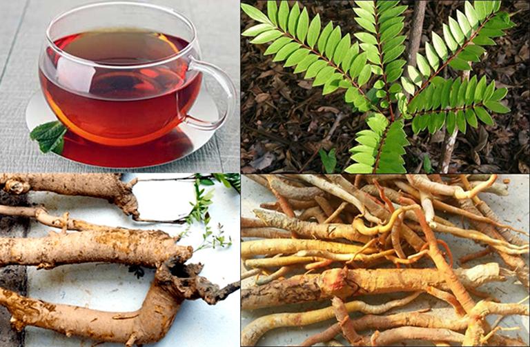 Mật nhân là loại cây được tận dụng để bào chế các loại thuốc tăng cường chức năng sinh lý phái mạnh.