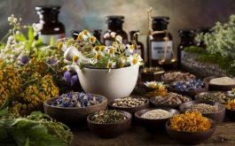 Top 12 bài thuốc nam trị rối loạn cương dương hiệu quả - Chớ bỏ lỡ