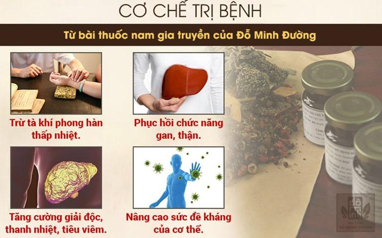 Cơ chế điều trị mẩn ngứa toàn thân của bài thuốc Nam gia truyền dòng họ Đỗ Minh