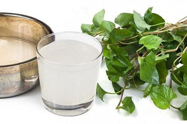 Dùng rau diếp cá kết hợp với nước vo gạo sẽ trở thành kháng sinh tự nhiên hỗ trợ điều trị ho có đờm