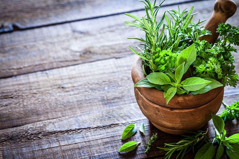 Bệnh trĩ nội có thể không cần phẫu thuật mà vẫn khỏi bệnh bằng cách sử dụng các loại thảo dược thiên nhiên tại nhà