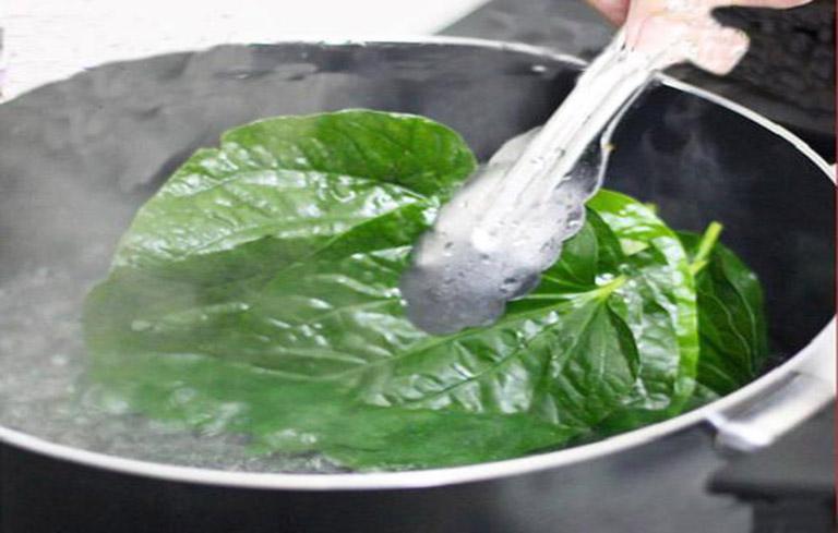 Nấu nước lá lốt để xông xoang