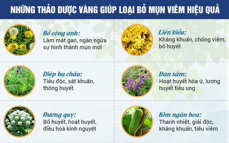 Công dụng của các loại thảo dược trong Bộ sản phẩm Trị Mụn trứng cá Hoàn NguyênCông dụng của các loại thảo dược trong Bộ sản phẩm Trị Mụn trứng cá Hoàn Nguyên