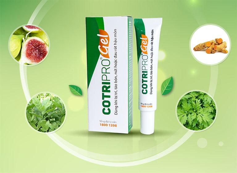 Thuốc bôi trĩ Cotripro gel được bào chế từ các thảo dược có sẵn trong tự nhiên như lá lốt, cây cúc tần, tinh chất nghệ, lá sung,... và một số thành phần tá dược khác