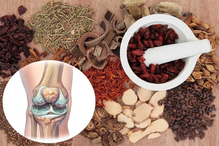 Điều trị thoái hóa khớp gối bằng phương pháp Đông y