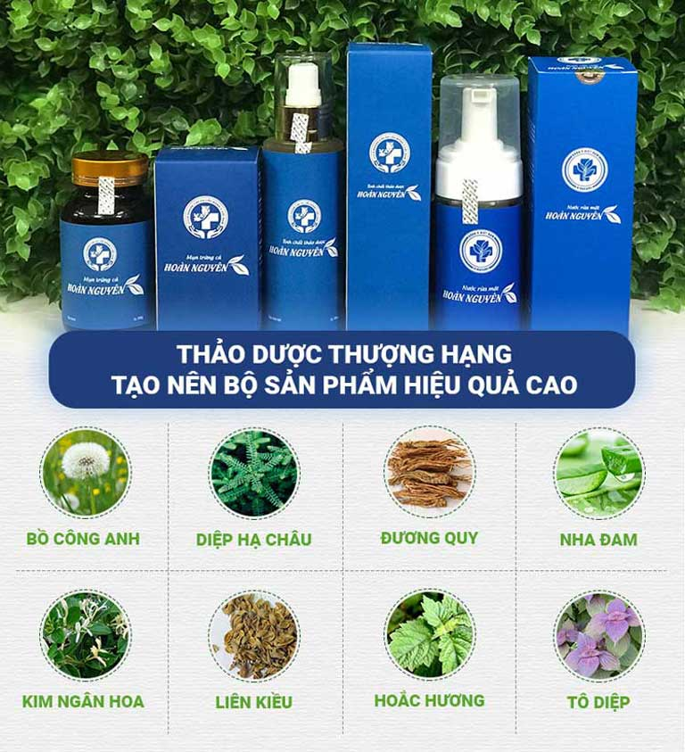 Hoàn Nguyên là sự tổng hợp của nhiều loại thảo dược quý