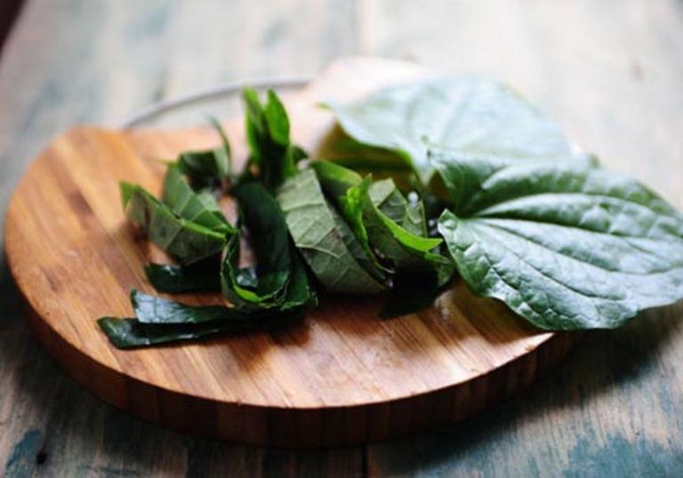 Dù dùng lá lốt làm thực phẩm hay dược liệu thì mỗi ngày không được dùng quá 100 gam.