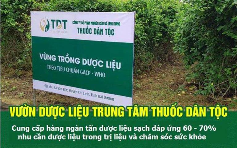 Vườn dược liệu tại Văn Đức - Hải Dương của TT Thuốc dân tộc