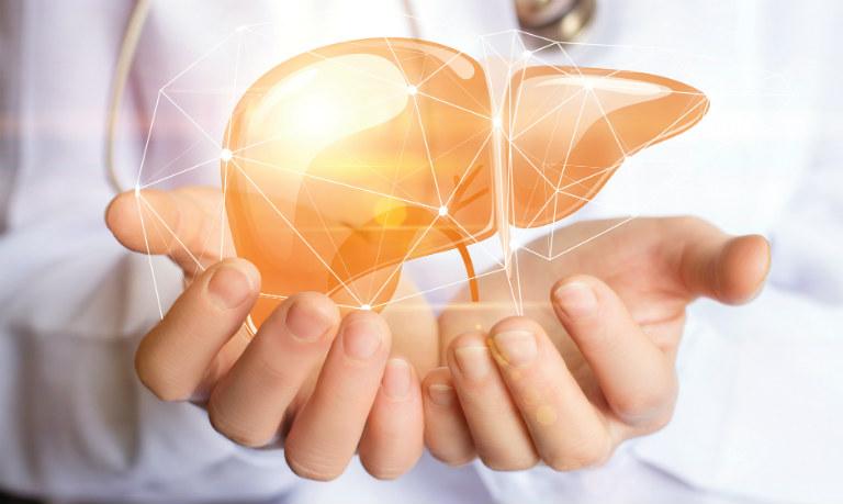 Thuốc Tonka có tác dụng phục hồi chức năng gian, giải độc gan, bồi bổ gan.