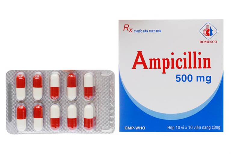 Chỉ định của thuốc Ampicillin 500mg