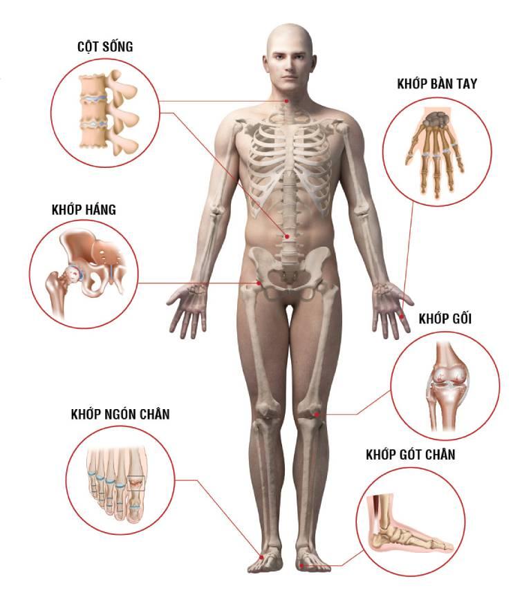 Có rất nhiều căn bệnh về cột sống thường gặp cần được quan tâm
