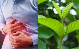 Cách chữa viêm đại tràng hiệu quả tại nhà