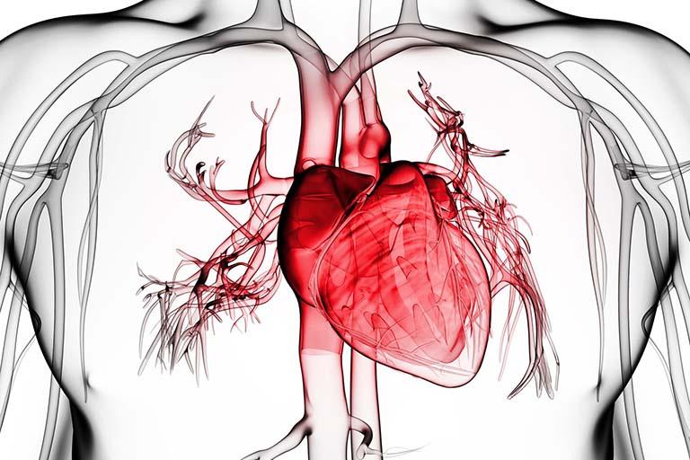 Viêm màng ngoài tim gây đau nhói sau lưng trên bên phải và bên trái