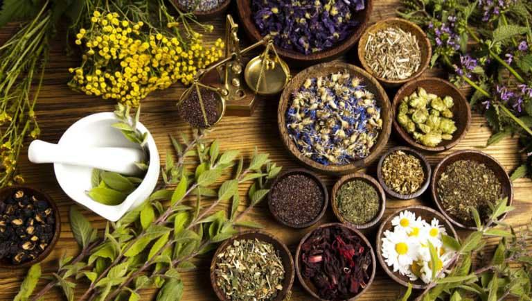 Sử dụng các loại thảo dược thiên nhiên để đẩy lùi các triệu chứng của bệnh thoái hóa đốt sống cổ