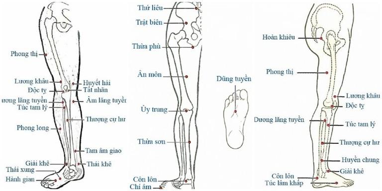 Một số huyệt đạo ở chân có tác dụng giảm đau thần kinh tọa.