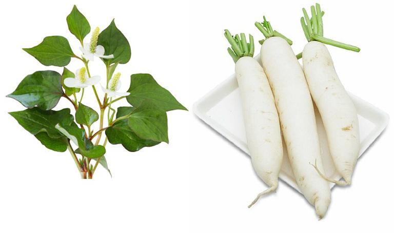 Loại bỏ thâm nám an toàn với rau diếp cá và củ cải trắng