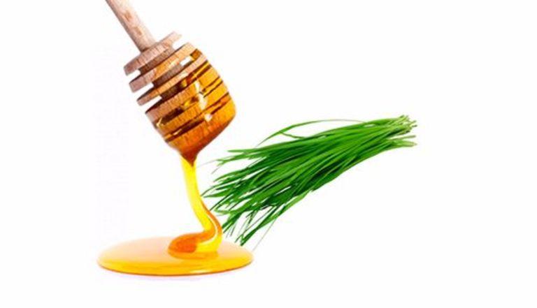 """Mật ong và hẹ là hai thành phần """"kinh điển"""" chữa ho khàn tiếng ở trẻ nhỏ. Tuy nhiên, không được dùng mật ong cho trẻ dưới 1 tuổi."""