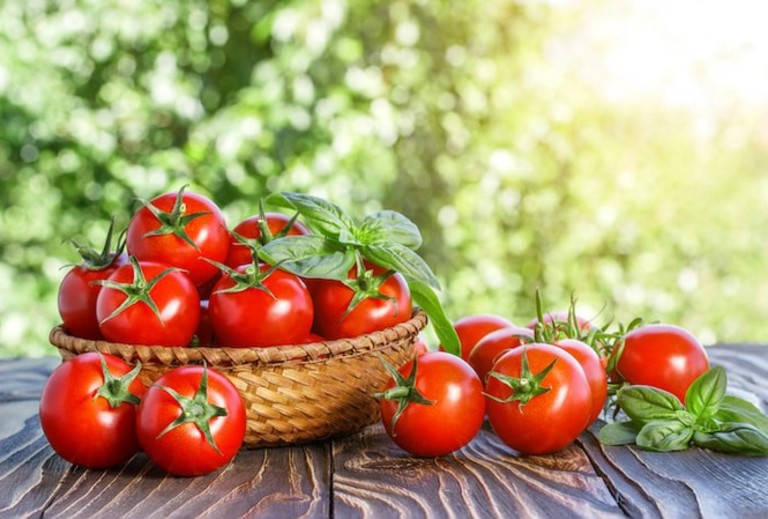 Cà chua giúp tăng cường dịch khớp. Đồng thời trong hạt của loại quả này còn chứa chất có tác dụng giảm đau.