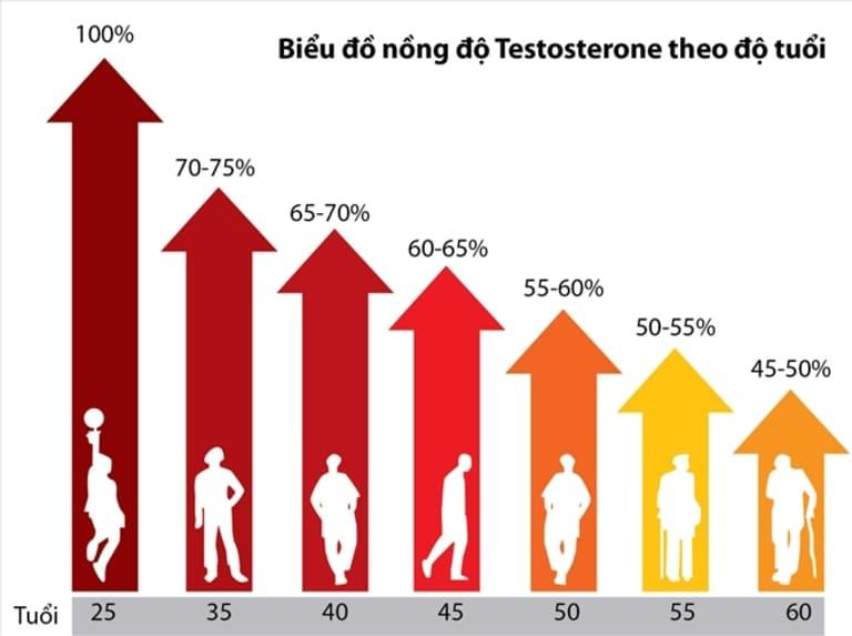 Sự suy giảm nội tiết tố nam theo độ tuổi cũng là nguyên nhân quan trọng dẫn đến yếu sinh lý nam