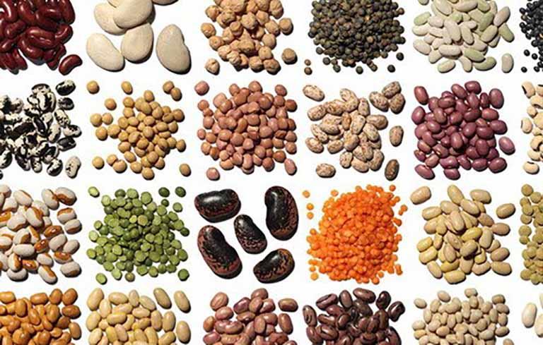 Đậu đen,đậu đỏ là những thực phẩm tốt cho người bệnh