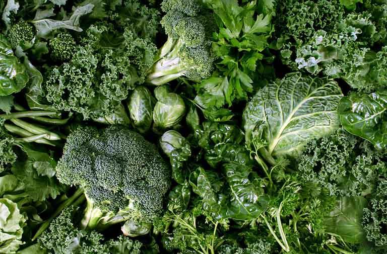 Các loại rau màu xanh lá đậm