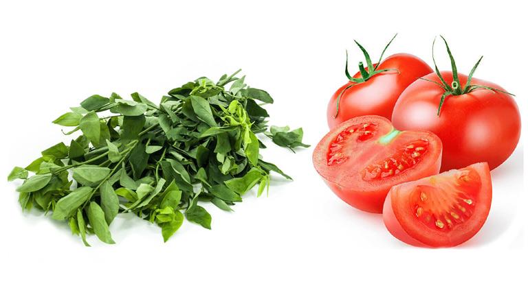 Trị nám bằng rau ngót và cà chua