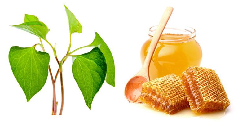 Trị nám da bằng rau diếp cá và mật ong