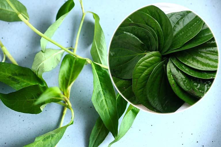 Sử dụng lá trầu không và rau răm chữa bệnh tổ đỉa, giúp làm dịu vùng da bệnh