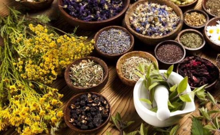 Kinh nghiệm dân gian có nhiều loại thảo dược thiên nhiên chữa bệnh lang ben. Đa số hiệu quả trong trường hợp bệnh nhẹ.
