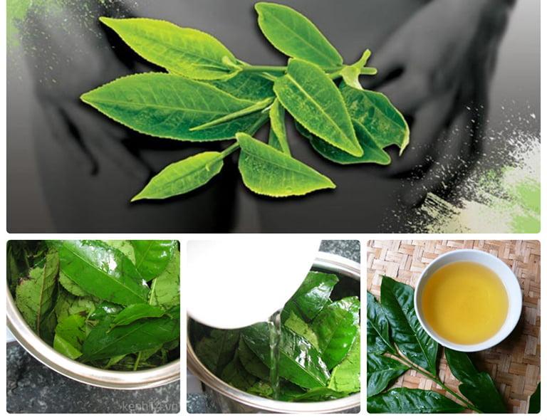 Cách chữa bệnh phụ khoa bằng trà xanh