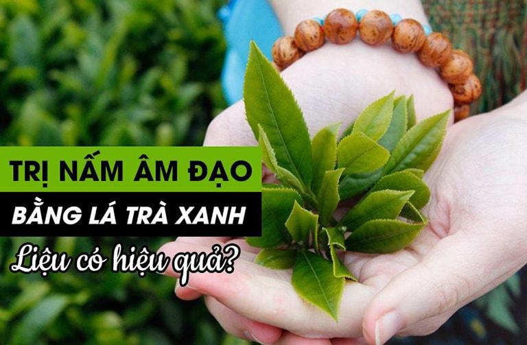Lá trà xanh có khả năng kháng nấm, khuẩn tốt nhưng không trị bệnh tận gốc