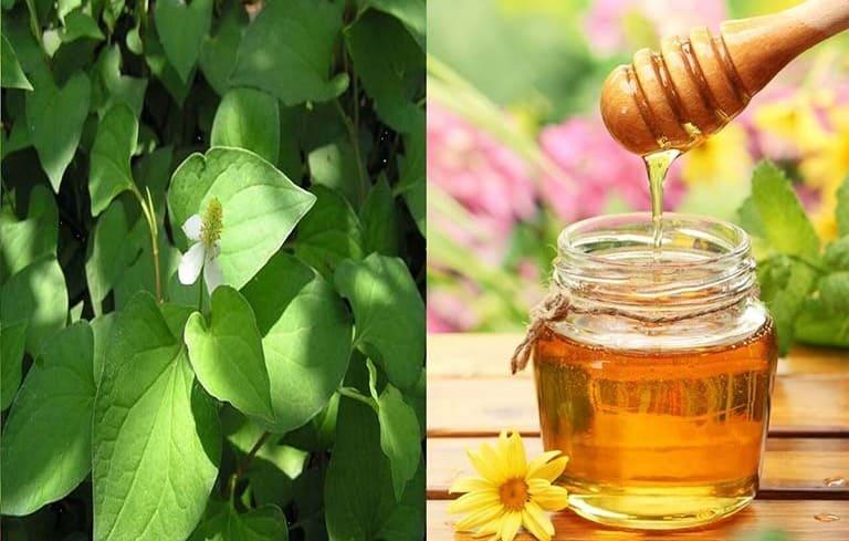 Mật ong và rau diếp cá trị viêm họng