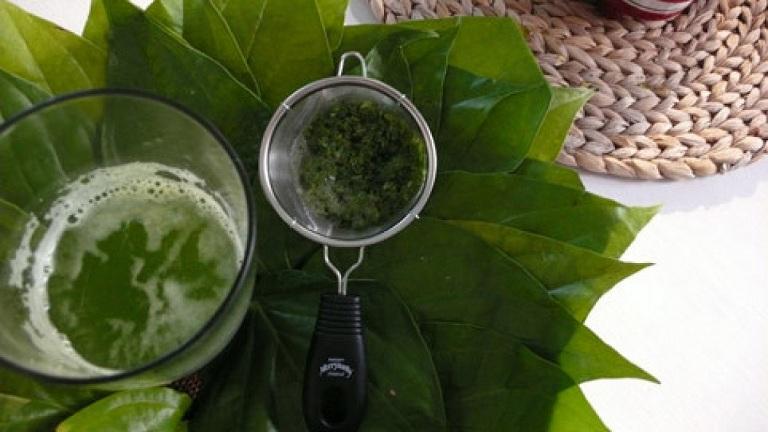 Chữa bệnh dạ dày bằng cách uống nước lá trầu không