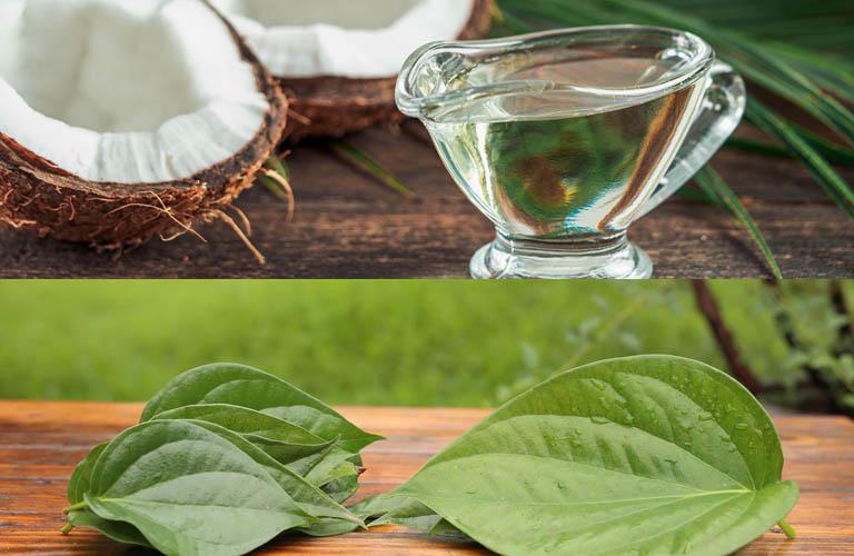 Sử dụng kết hợp lá trầu không và dầu dừa chữa bệnh vảy nến