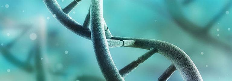 vảy nến có di truyền không