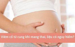 Viêm cổ tử cung khi mang thai có ảnh hưởng đến thai nhi