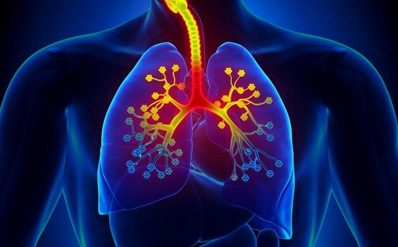 Viêm phế quản dạng hen khác với hen suyễn
