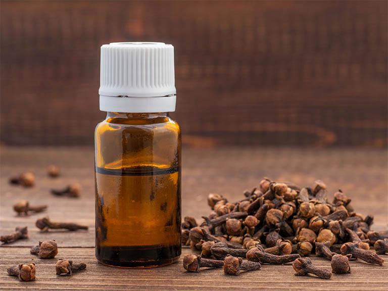 Thành phần tinh dầu eugenol có trong nụ đinh hương có tác dụng gây tê, kháng khuẩn, giảm đau nhức nhanh chóng, cải thiện triệu chứng do viêm lợi gây ra