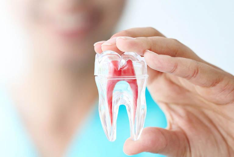 12 cách điều trị viêm tủy răng tại nhà an toàn hiệu quả