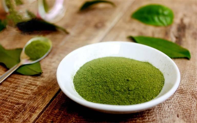 Thường xuyên đắp mặt nạ từ bột trà xanh sẽ giúp giảm mụn ẩn và thâm nám đáng kể