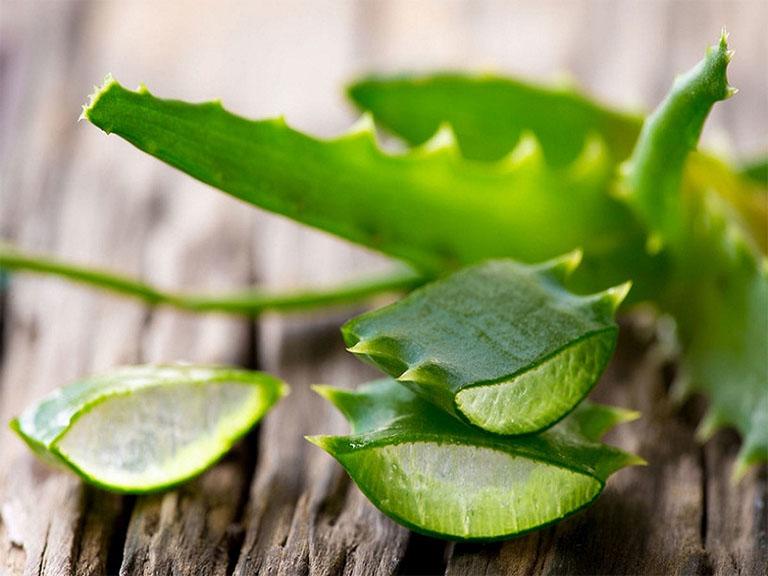 Gel nha đam chứa rất nhiều thành phần collagen và vitamin có tác dụng ức chế sự phát triển của sắc tố gây sạm da