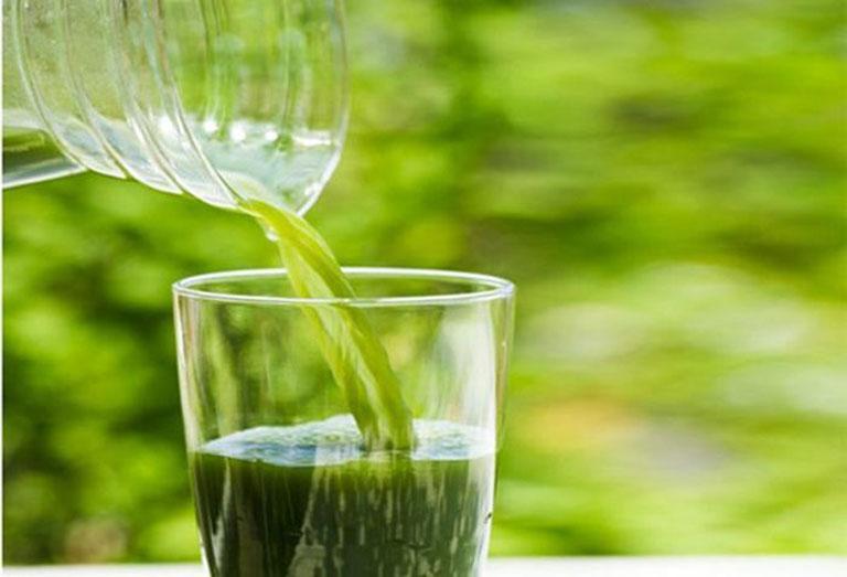 Uống nước lá khế chữa nổi mề đay