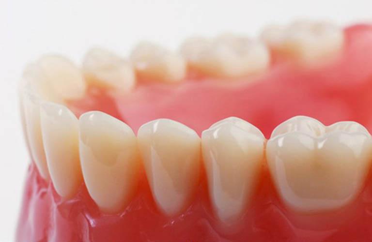 Cấu tạo của nướu răng