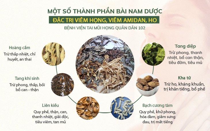 Thành phần Thanh Hầu Bổ Phế Thang