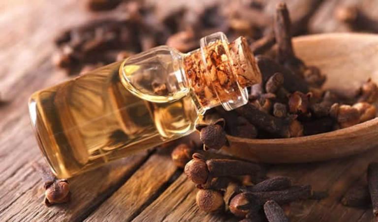 Tinh dầu đinh hương dùng riêng lẻ hoặc kết hợp với nước trà xanh chữa chảy máu chân răng.