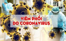 Viêm phổi do virus corona