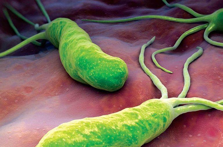 Trẻ bị nhiễm khuẩn HP sẽ rất dễ bị viêm dạ dày