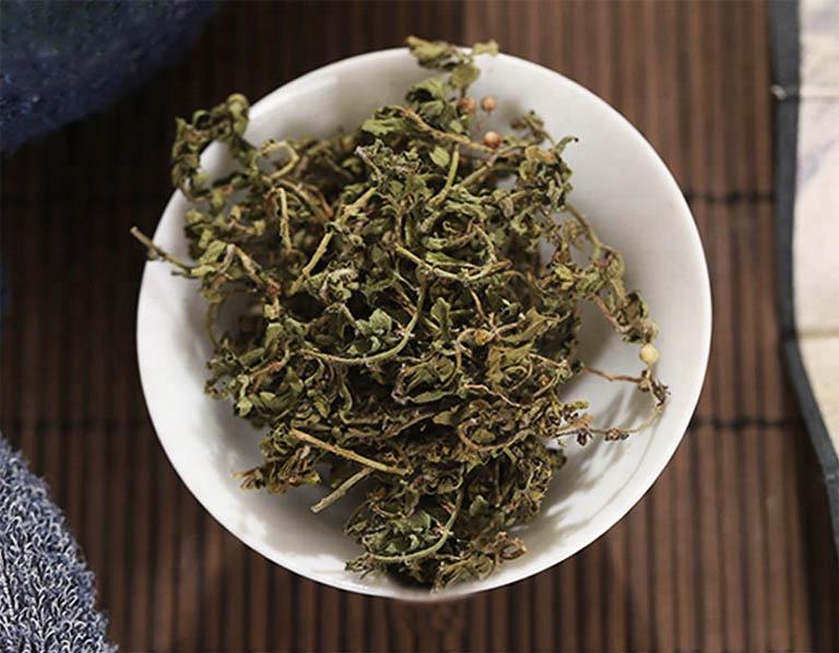 Những bài thuốc hay từ cây cỏ the - Bài thuốc dân gian