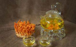 Đông trùng hạ thảo ngâm mật ong có tác dụng gì