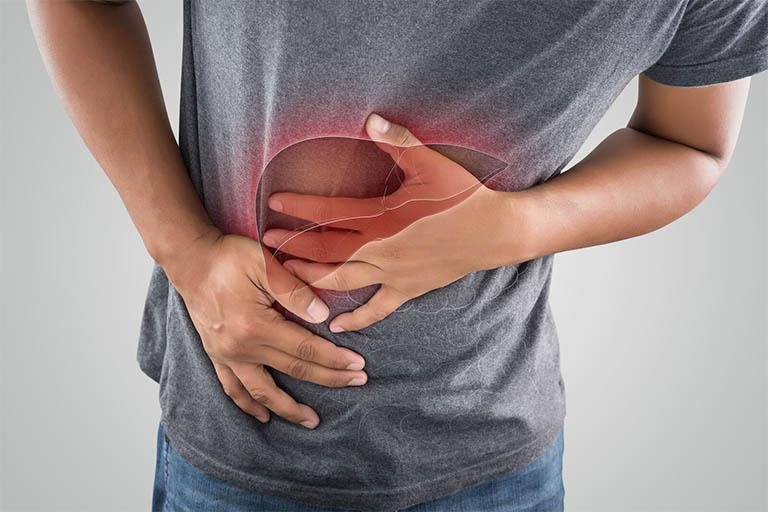 Men gan cao là tình trạng gan bị tổn thương do việc dung nạp quá nhiều các thức ăn cay nóng, thức ăn nhiều dầu mỡ hay các đồ uống có cồn